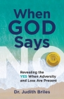 When God Says NO - Revealing the YES When Adversity and Lost Are Present Cover Image