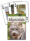 Mammals of the Northeast Playing Cards (Nature's Wild Cards) Cover Image