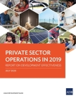 Private Sector Operations in 2019: Report on Development Effectiveness Cover Image