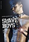 Slave Boys: Gay S/M Erotica Cover Image