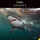 National Geographic: Sharks 2022 Wall Calendar Cover Image