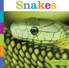 Seedlings: Snakes Cover Image