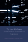 The Incurable-Image: Curating Post-Mexican Film and Media Arts (Edinburgh Studies in Film and Intermediality) Cover Image