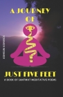 A Journey of Just Five Feet: A Book of Santmat Meditative Poems Cover Image