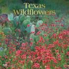 Texas Wildflowers 2020 Square Foil Cover Image