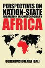 Perspectives on Nation-State Formation in Contemporary Africa Cover Image