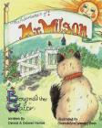 The Adventures of Mr Wilson: Beyond the Gate Cover Image