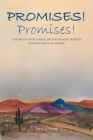 Promises! Promises!: A story of overcoming deception and tragedy through faith in Christ. Cover Image