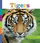 Seedlings: Tigers Cover Image