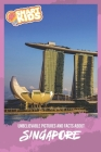 Unbelievable Pictures and Facts About Singapore Cover Image