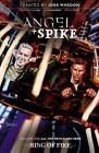 Angel & Spike Volume 1 Cover Image