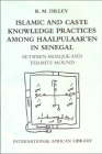 Islamic and Caste Knowledge Practices Among Haalpulaaren in Senegal: Between Mosque and Termite Mound (International African Library) Cover Image