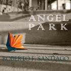 Angel Park Cover Image