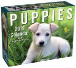 Puppies 2019 Mini Day-to-Day Calendar Cover Image