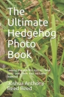 The Ultimate Hedgehog Photo Book: Looking through the eyes of these spiny coat, short legs nocturnal mammal Cover Image