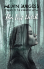 The Lost Witch Cover Image