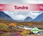 Tundra (Tundra Biome) (Spanish Version) (Biomas (Biomes)) Cover Image