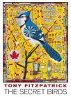 Tony Fitzpatrick: The Secret Birds Boxed Notecard Assortment Cover Image
