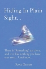 Hiding In Plain Sight...: There is