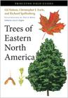 Trees of Eastern North America Cover Image