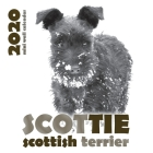 Scottie: Scottish Terrier 2020 Mini Wall Calendar Cover Image