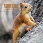 Squirrels Calendar 2021: 16 Month Calendar Cover Image