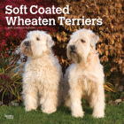 Wheaten Terriers, Soft Coated 2021 Square Cover Image