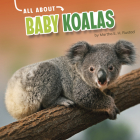 All about Baby Koalas Cover Image