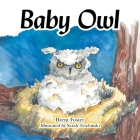 Baby Owl Cover Image