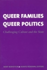 Queer Families, Queer Politics: Challenging Culture and the State (Between Men-Between Women: Lesbian and Gay Studies) Cover Image