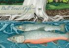 Bull Trout's Gift: A Salish Story about the Value of Reciprocity Cover Image