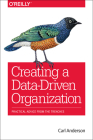Creating a Data-Driven Organization: Practical Advice from the Trenches Cover Image