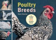 Poultry Breeds: Chickens, Ducks, Geese, Turkeys: The Pocket Guide to 104 Essential Breeds Cover Image