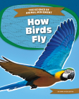 How Birds Fly Cover Image
