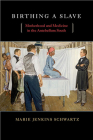 Birthing a Slave: Motherhood and Medicine in the Antebellum South Cover Image