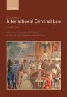 Cassese's International Criminal Law Cover Image