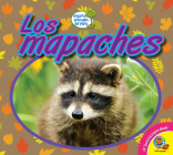 Los Mapaches Cover Image