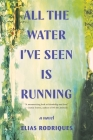 All the Water I've Seen Is Running: A Novel Cover Image