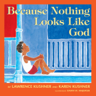 Because Nothing Looks Like God Cover Image