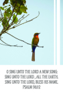 Sing Unto the Lord Bulletin (Pkg 100) General Worship Cover Image