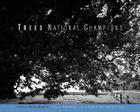 Trees: National Champions Cover Image