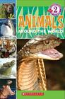Scholastic Reader Level 2: Animals Around the World Cover Image