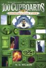 Dandelion Fire (100 Cupboards #2) Cover Image