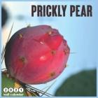prickly pear 2021 Calendar: 18 Months Calendar 2021 Cover Image