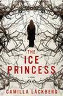 The Ice Princess: A Novel Cover Image