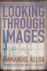 Looking Through Images: A Phenomenology of Visual Media (Columbia Themes in Philosophy) Cover Image