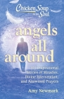 Chicken Soup for the Soul: Angels All Around: 101 Inspirational Stories of Miracles, Divine Intervention, and Answered Prayers Cover Image