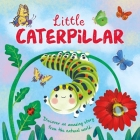 Nature Stories: Little Caterpillar: Padded Board Book Cover Image