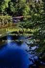 Healing Is Voltage: Healing Eye Diseases Cover Image