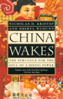 China Wakes: The Struggle for the Soul of a Rising Power Cover Image